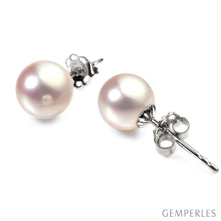 Boucles oreilles or blanc type clou - Perles Akoya du Japon - 7/7.5mm