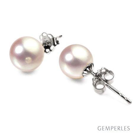 Boucles d'oreilles perles Akoya - 7/7.5mm - GEMME - Or blanc