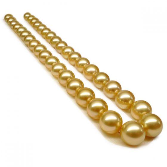 Collier perles d'Australie dorées - Grosses perles 10/12mm - AAA