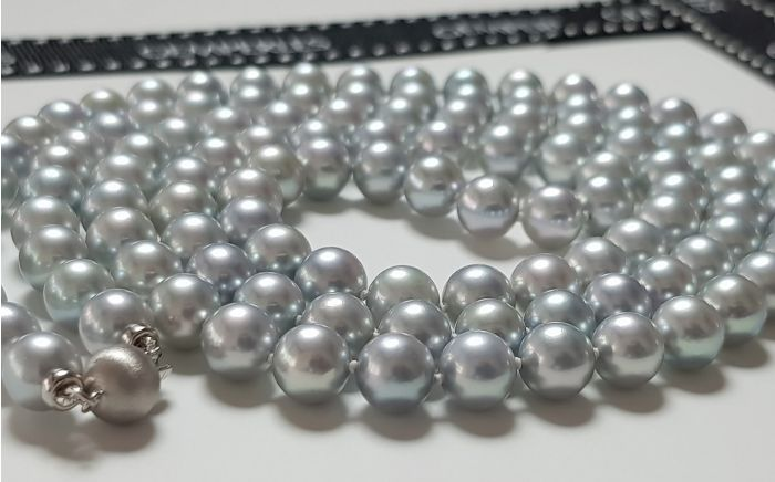 Collier perle Akoya bleu grise - Princesse Mononoké I Gemperles